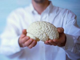 Ученые разрабатывают методику вживления искусственных воспоминаний